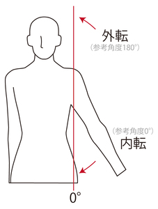 肩関節外転・内転の動き
