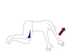 右肩を上に横向きに寝て、股関節を90度曲げます