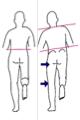 片脚立ちの時の骨盤傾斜2