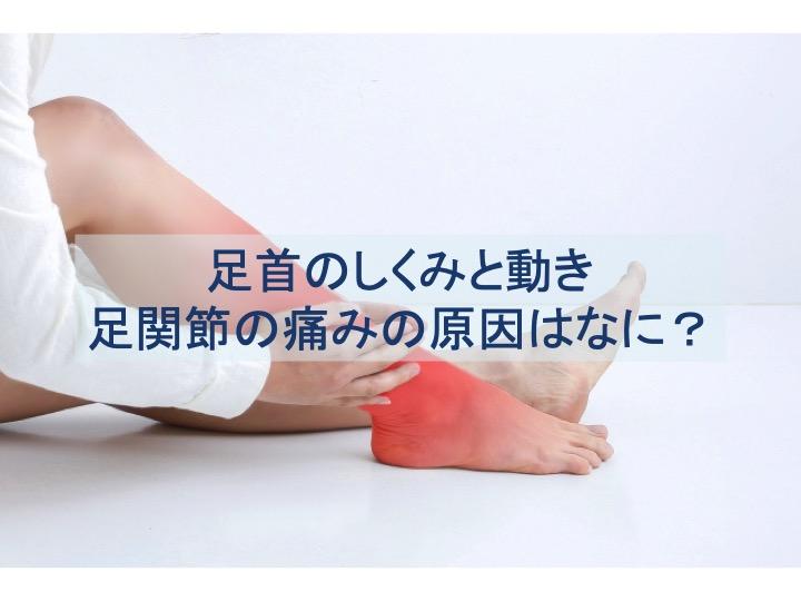 足首の仕組みと動きのトップ画像