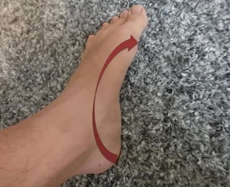 内側縦アーチを持ち上げた足