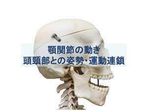 頭頸部の姿勢・運動連鎖のトップ画像