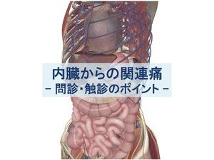 内臓からの関連痛・問診・触診のポイントのトップ画像