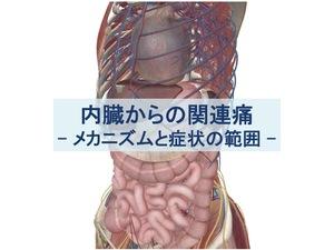 内臓からの関連痛のトップ画像