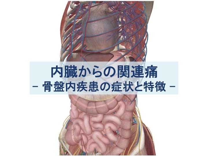 骨盤内疾患の症状と特徴のトップ画像