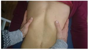 呼吸を用いた下位肋骨の評価方法