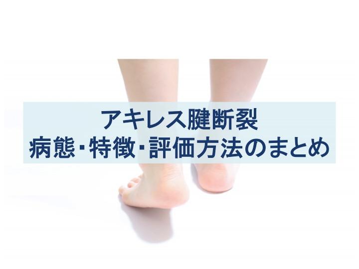 アキレス腱断裂:病態・特徴・評価方法のまとめ記事のトップ画像