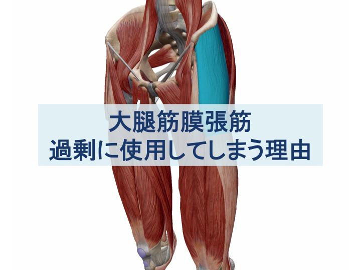 大腿筋膜張筋を過剰に使用してしまう理由のトプ画像