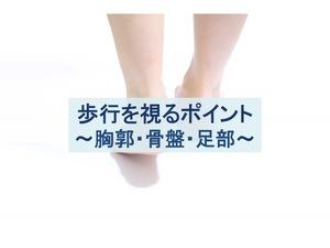 歩行を視るポイント:胸郭・骨盤・足部のトップ画像