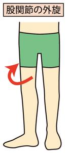 股関節外旋のイラスト