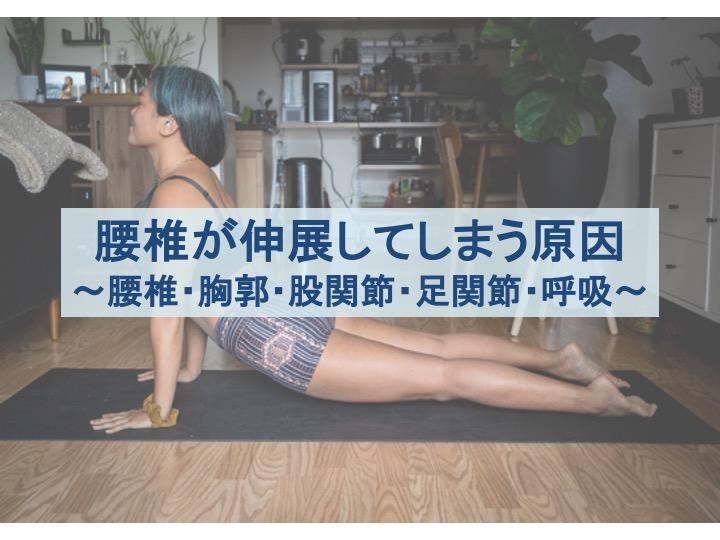 腰椎が伸展してしまう原因のトップ画像