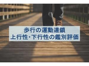 歩行の上行性・下行性運動連鎖の介入における鑑別評価