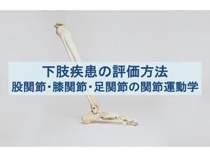 下肢疾患の評価方法の流れのトップ画像