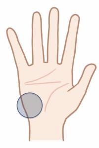 小指球のマッサージポイント